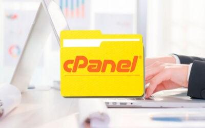 Crea archivos de respaldo con cPanel